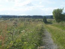 Wiesenlandschaft in der Nähe des Rurtals, © Gerhard Reuter, AVES-Ostkantone