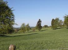 Wiesenlandschaft bei Hünningen/Büllingen, © Gerhard Reuter, AVES-Ostkantone